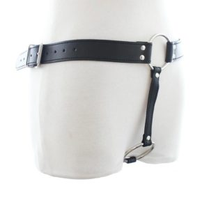 Leather Plug Harness