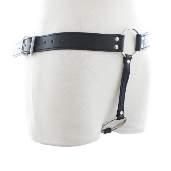 Leather Plug Harness
