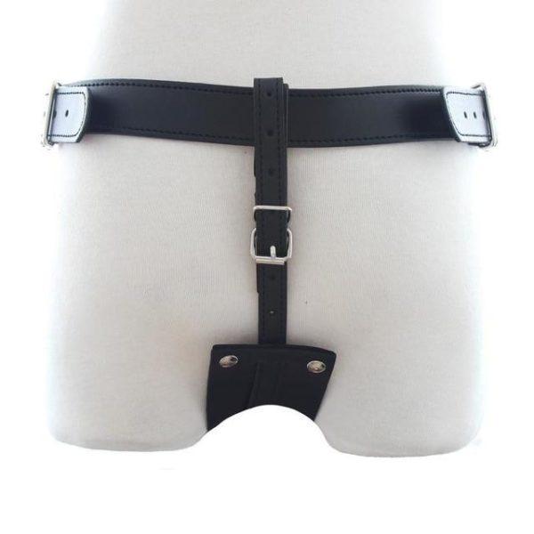 Black Plug Harness